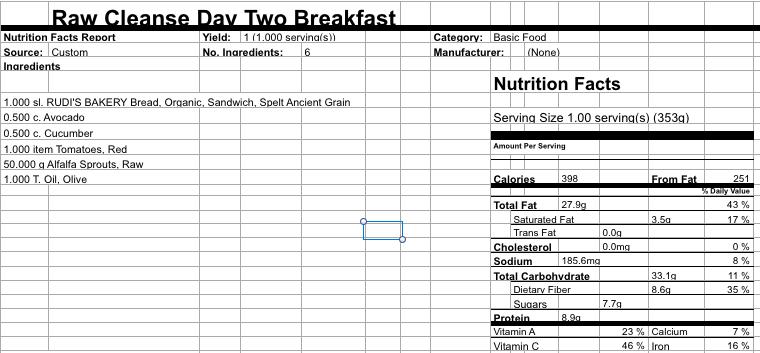 Raw Cleanse Breakfast Day 2